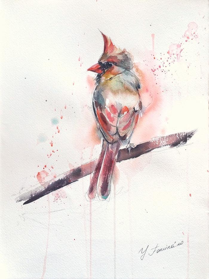птицы в акварели тамбов компания производит