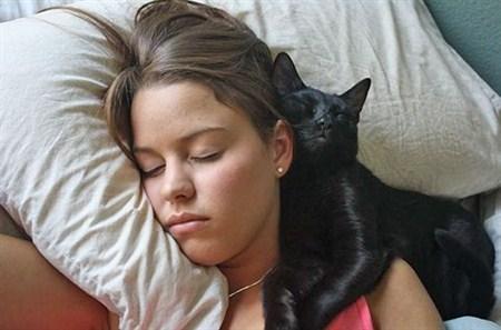 Кошачьи повадки, что они означают? Кот, Кошатники, Кошкин дом, Котята, Длиннопост