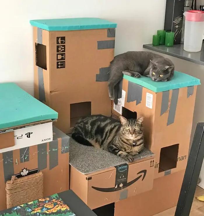 Короли коробок