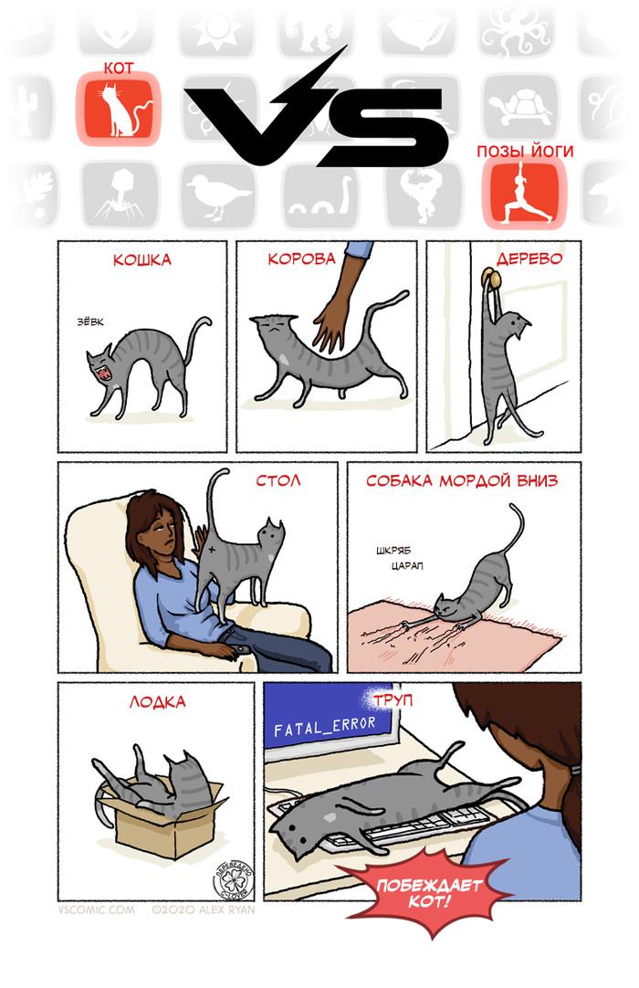 Кот VS Позы йоги