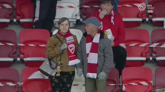 Невероятно милая пожилая пара на футболе в Венгрии Спорт, Футбол, Венгрия, Болельщики, Поцелуй, Милота, Гифка