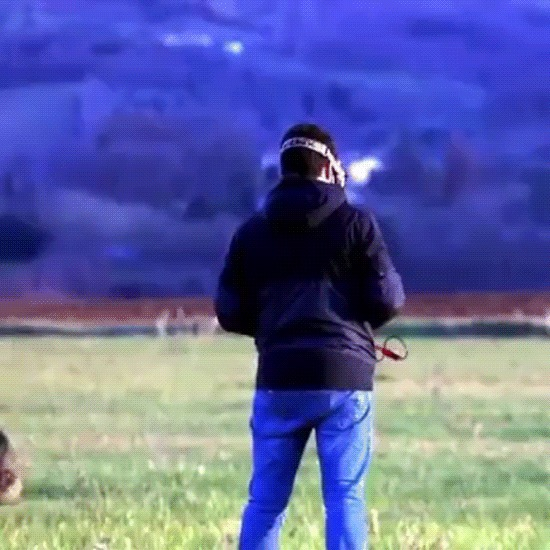 Лошадка испугалась дрона