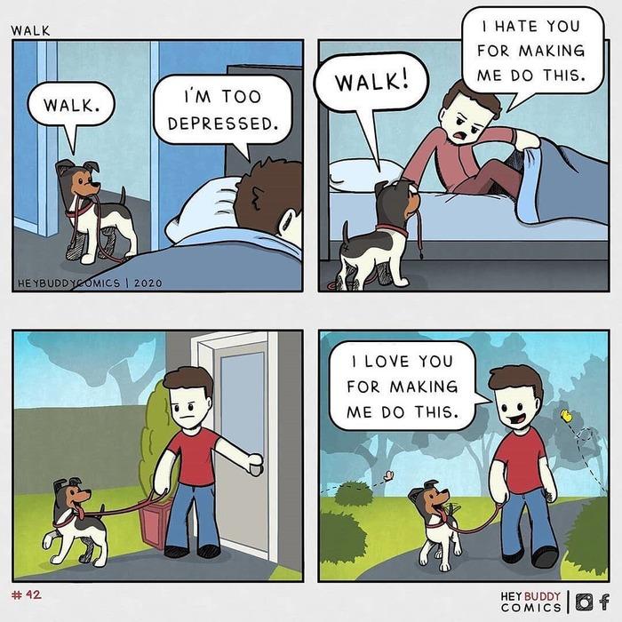 Собака на диете