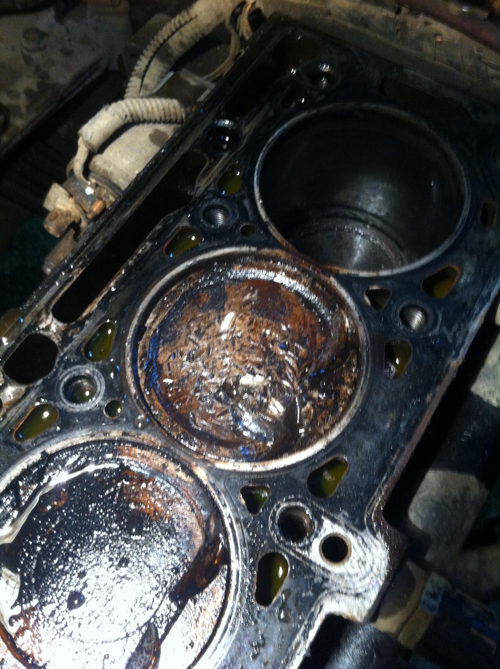 Последствия течи сальника к в Последствия течи сальника к в Ремонт рено Пашапашет автосервис ремонт ДВС