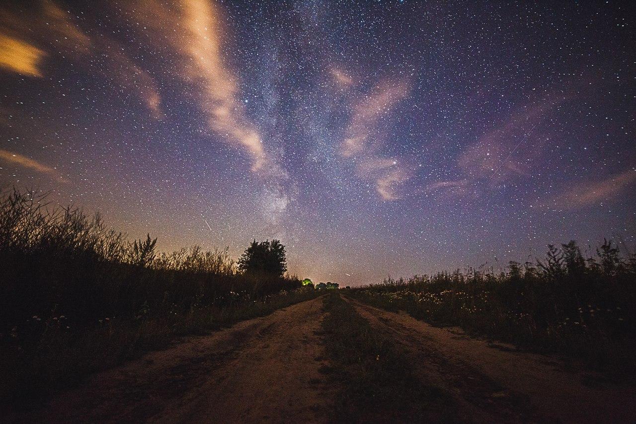 картинки летние ночи