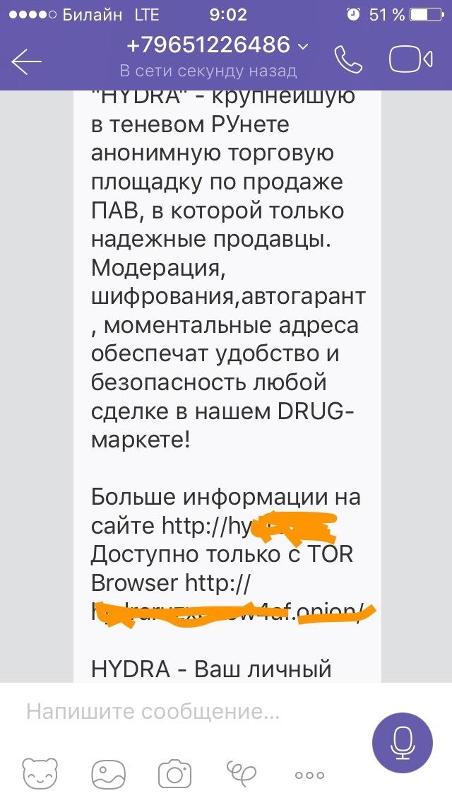 tor browser работает медленно gidra