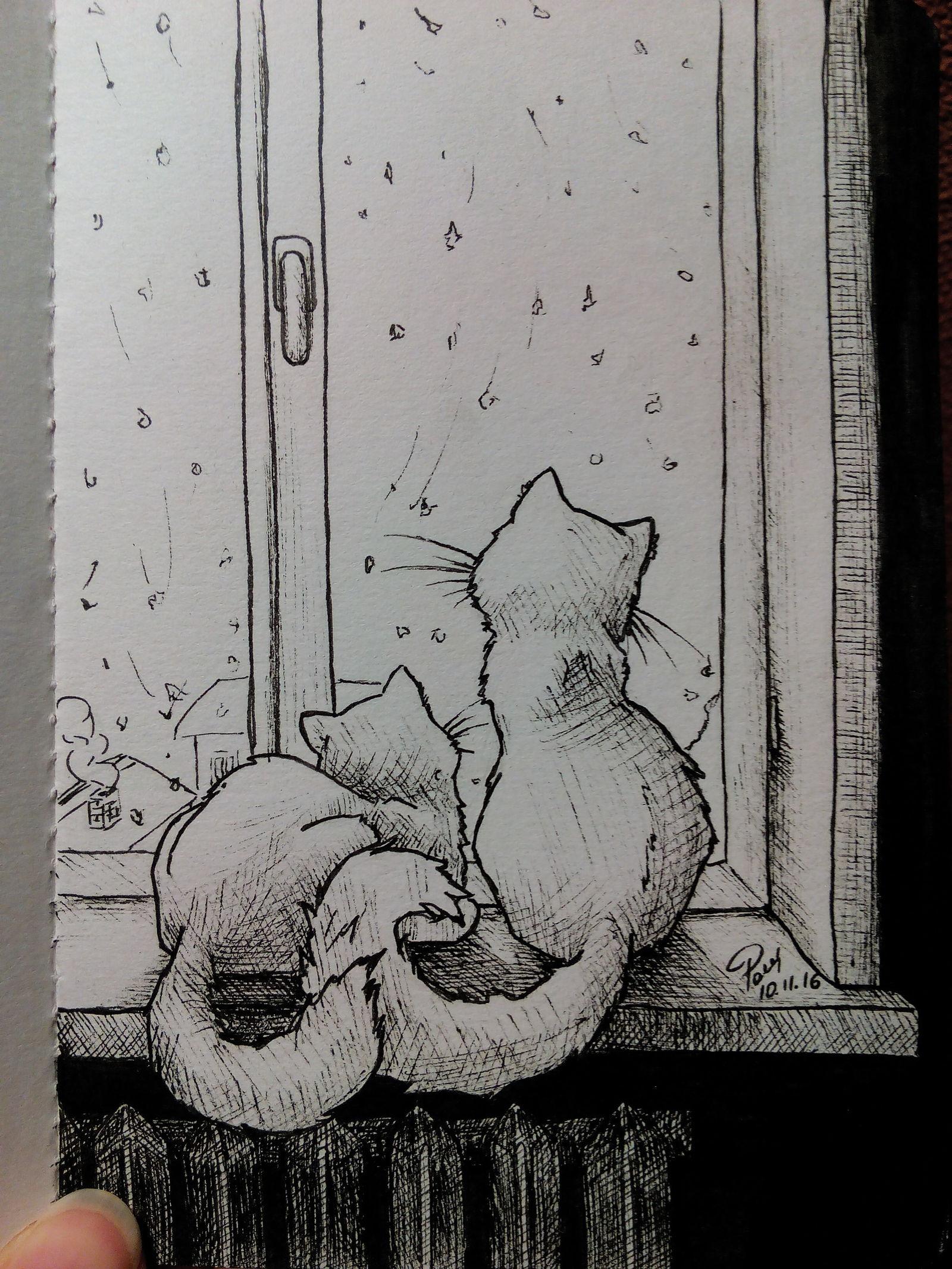 Кот и окно рисунок