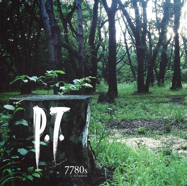 """Картинки по запросу """"p.t."""""""