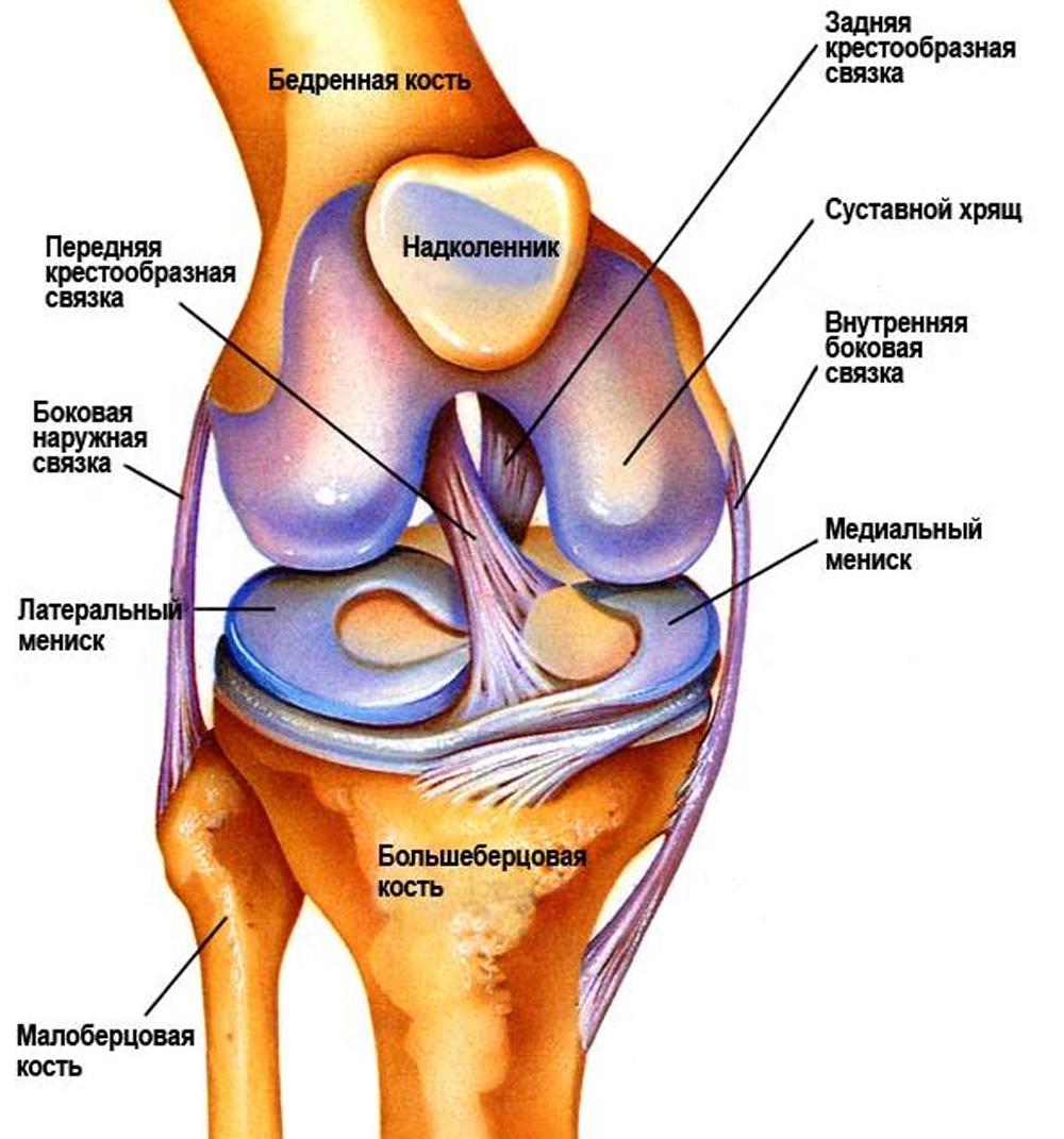 Можно ли заниматься на эллипсе если болят тазобедренные суставы воспалился сустав на ноге лечение народными средствами