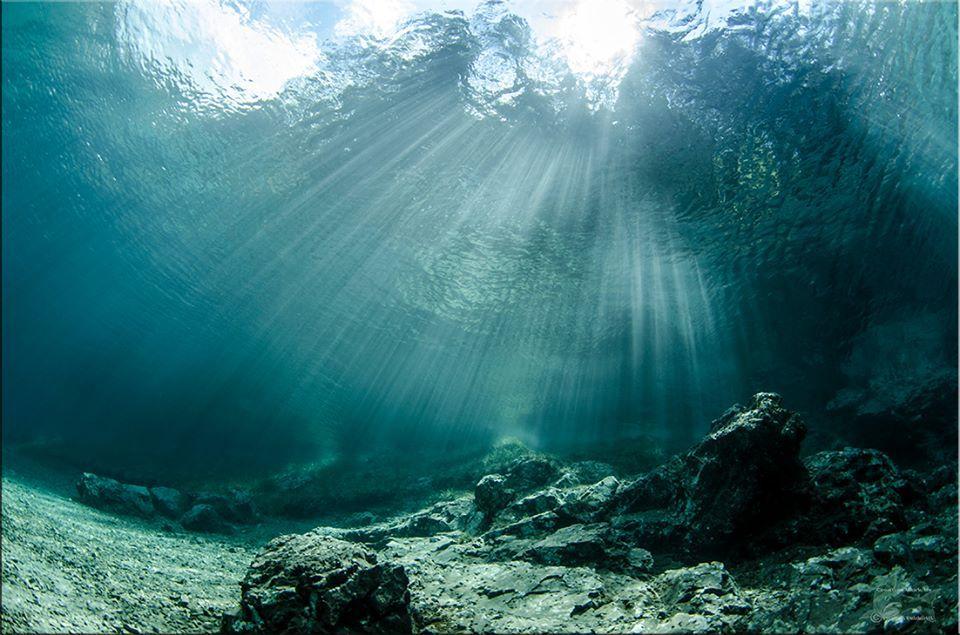 Подводные пейзажи