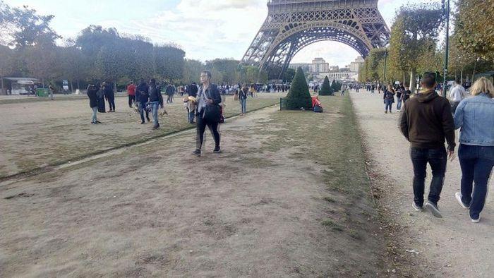 Округ негров в париже