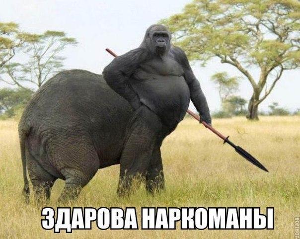 podmivaetsya-v-vannoy-foto