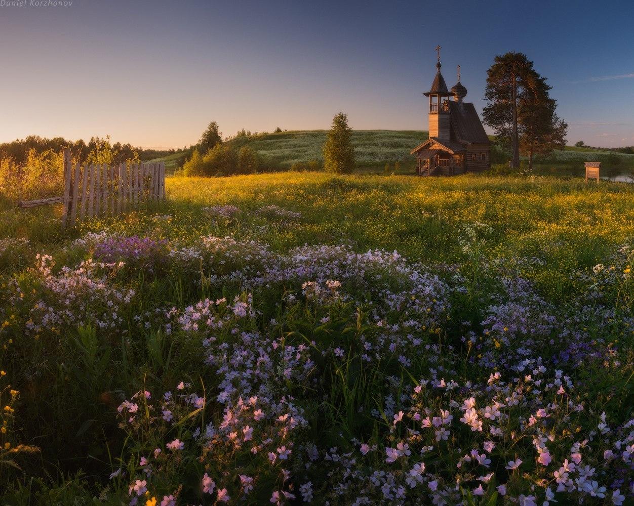 картинки деревня природа летом