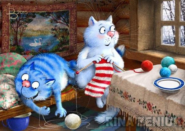 Синие коты 2017