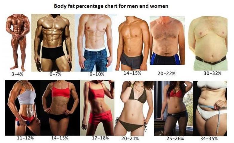 сколько нужно делать кардио чтобы похудеть