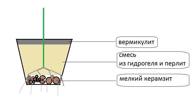 Випон вермикулит гидропоника альметьевск гашиш спайс