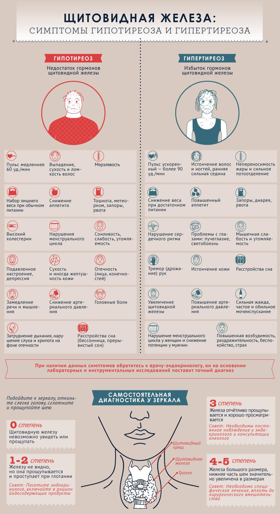 Расшифровка узи щитовидной железы простые советы