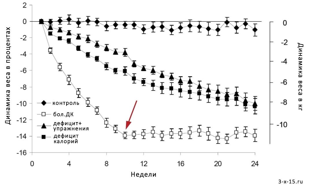 Имеет ли смысл считать калории  Все калории одинаковы (2 2) Подсчет калорий b006ceaed08