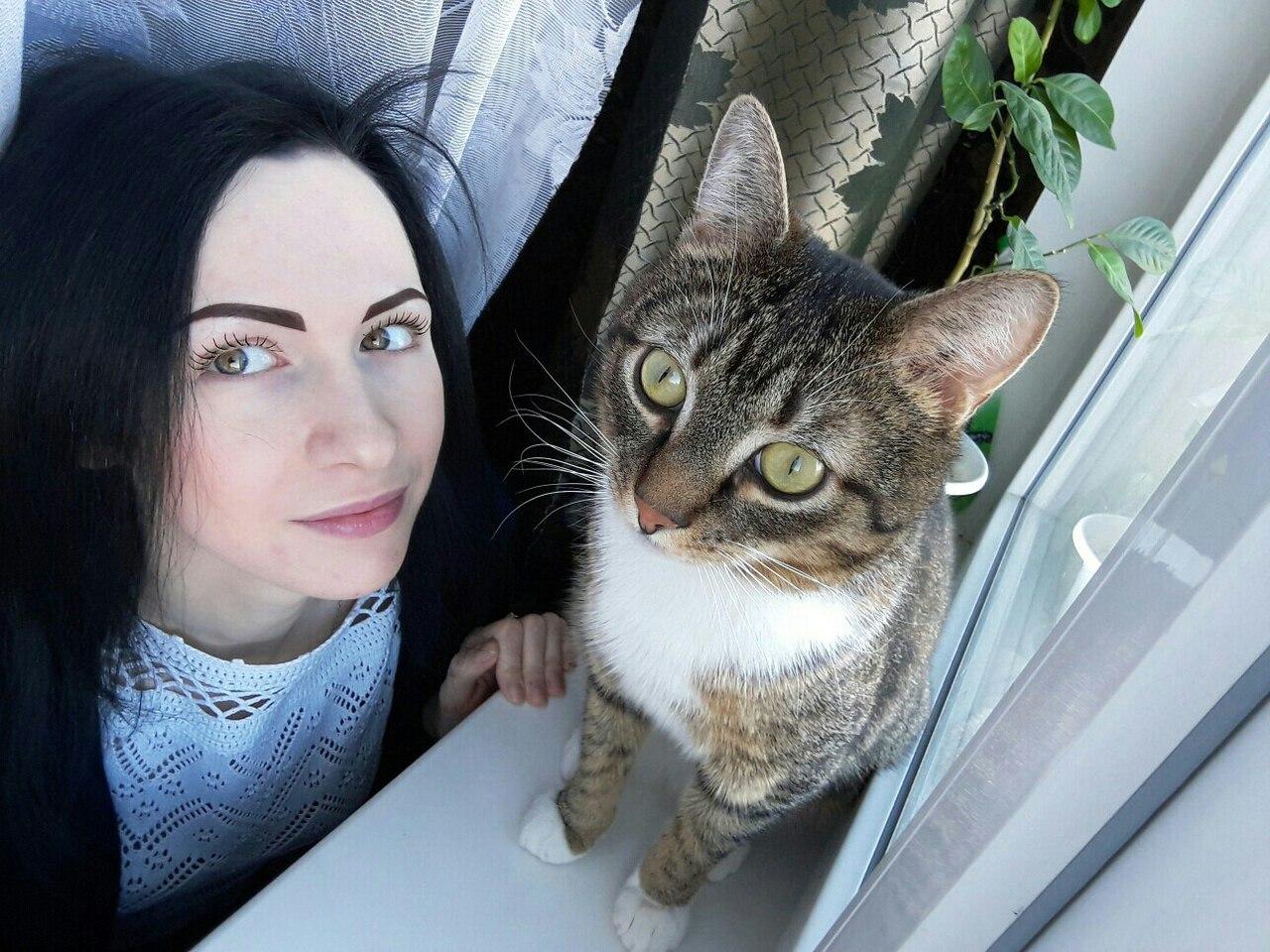 Жизнь от лица кота