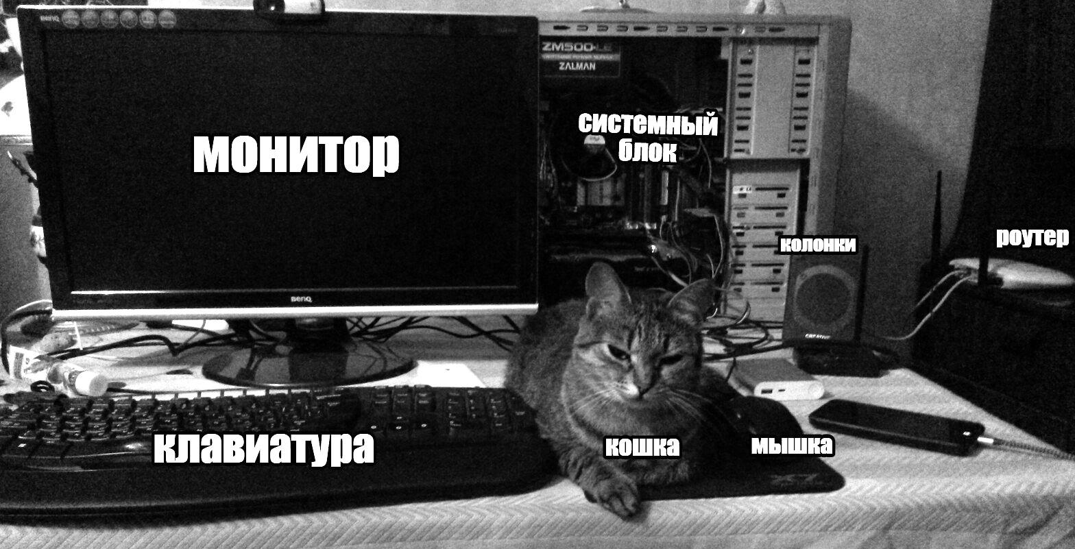 ustroystvo-kompyutera-dlya-chaynikov-razdevayut-devushek-na-ulitse-onlayn