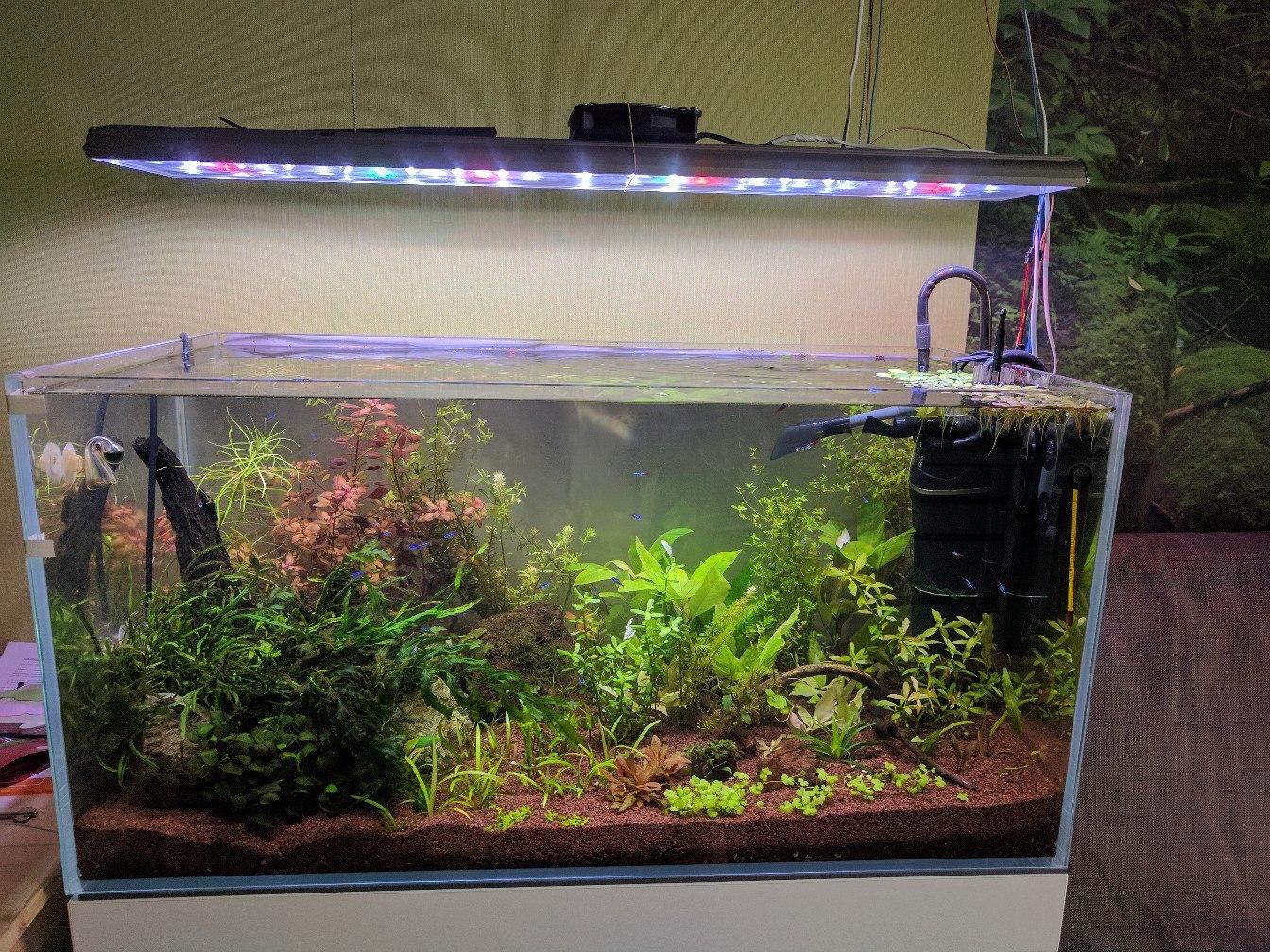 Для аквариума сделано своими руками фото 430