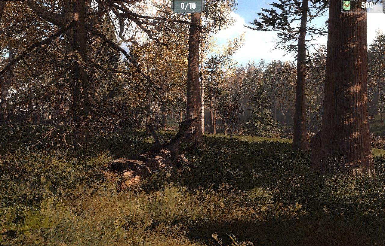 Завез бабу в лес — photo 7