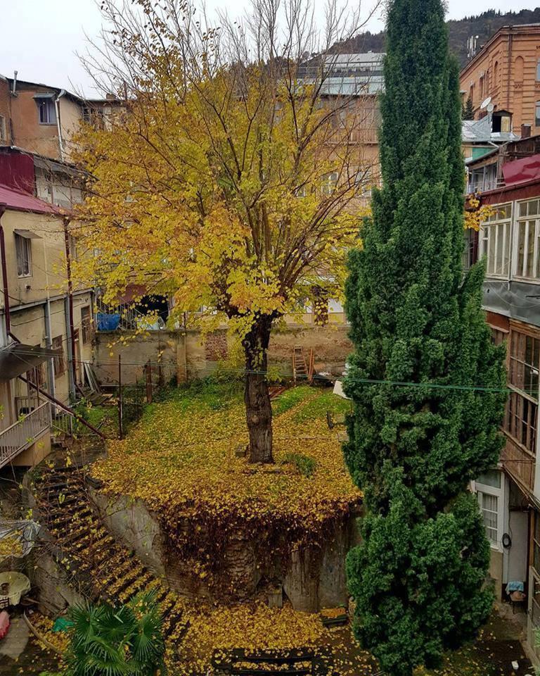 Получения ТУ Дворики Получение документов на электроснабжение в Дмитриевского улица
