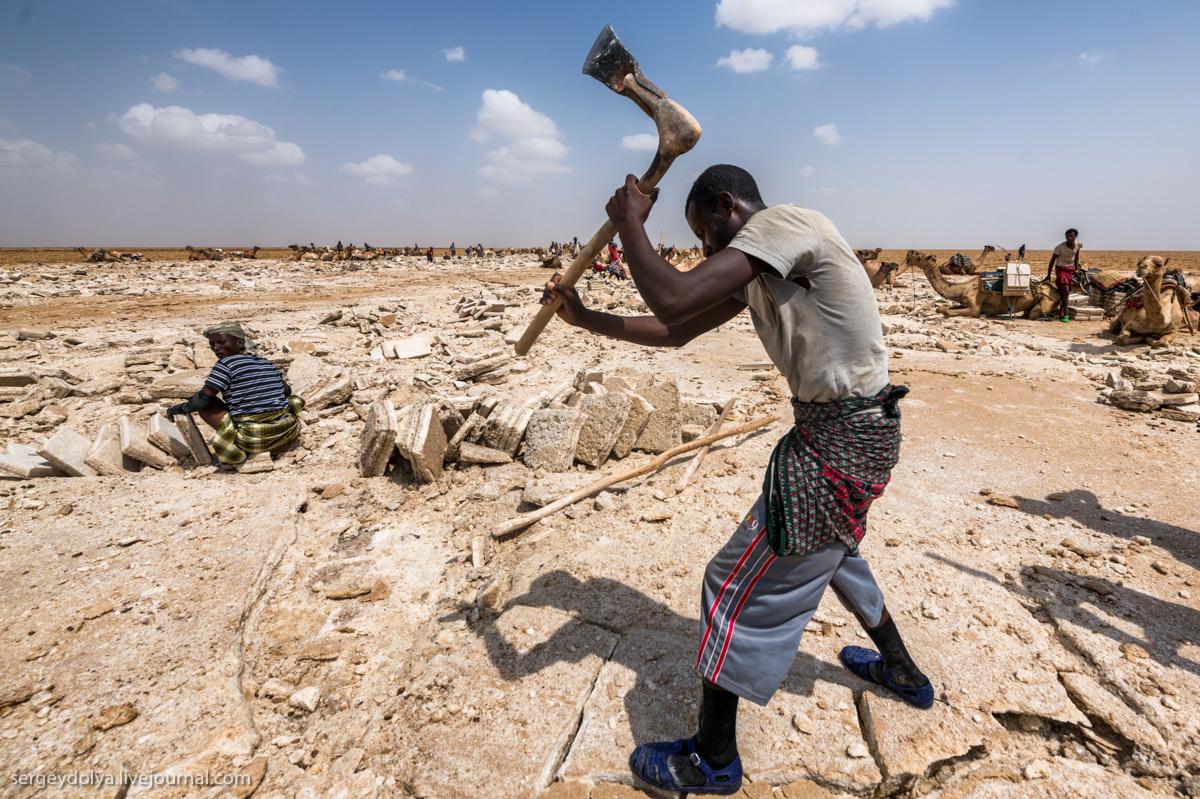 Как добывают соль в Эфиопии