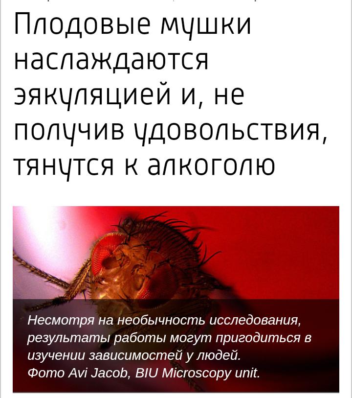 всякого сомнения. русское порно видео брат трахнул сестру услугами данного блога мне