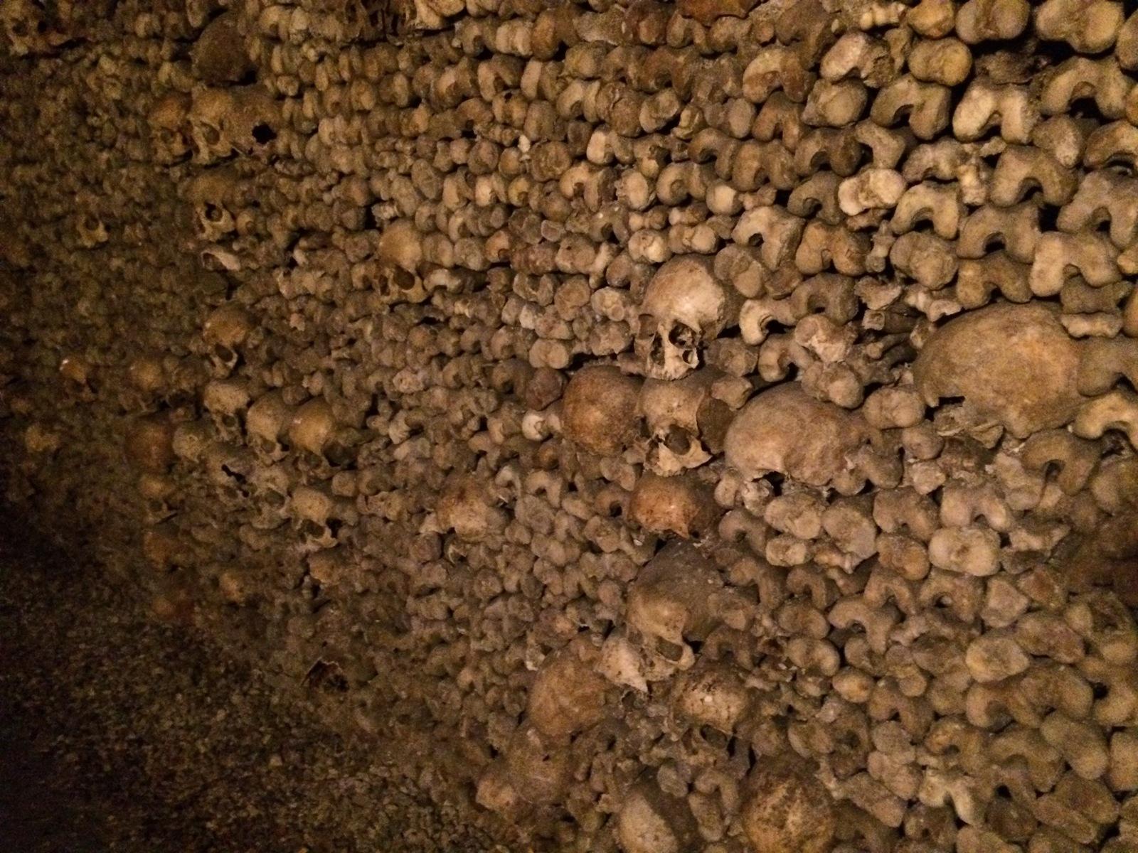 Обои черепа, Катакомбы, кости. Разное foto 16