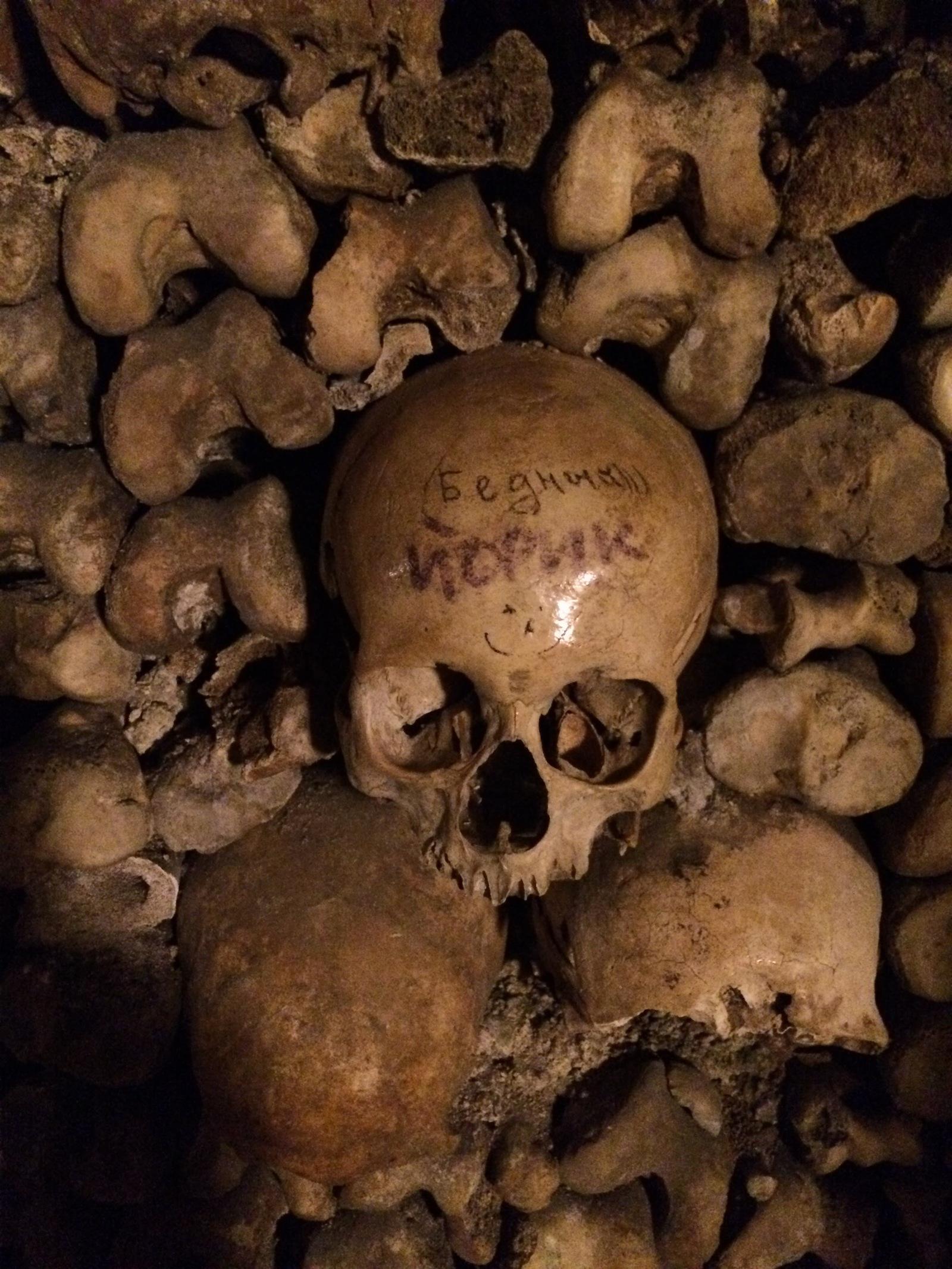 Обои черепа, Катакомбы, кости. Разное foto 10