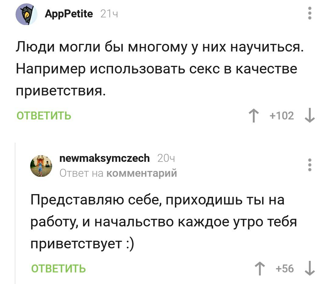 https://cs9.pikabu.ru/post_img/big/2020/01/12/9/1578838952192532950.png