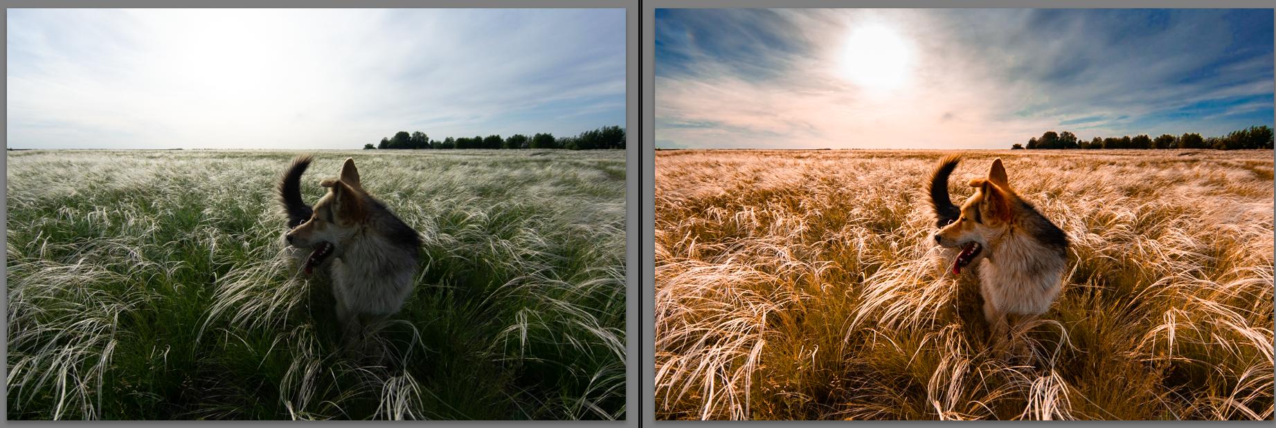 Обои картина, fotoshop, осен, экспозиция. Разное