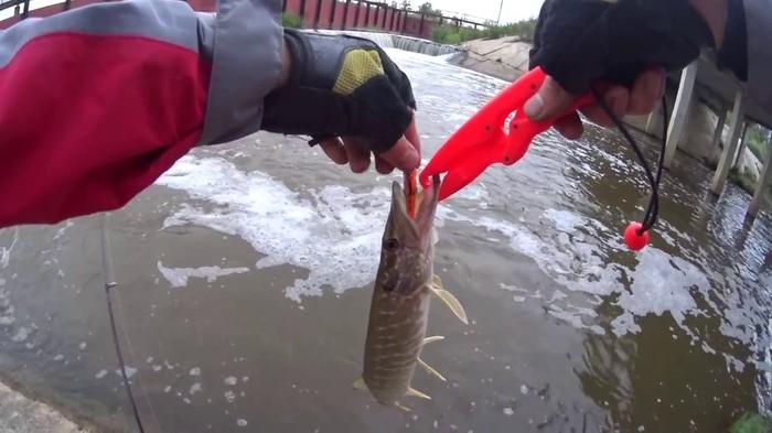 ловля щуки на воблеры на озере видео с берега в мае